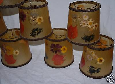 A Vintage Set of 8 Inlaid Dry Floral Shades