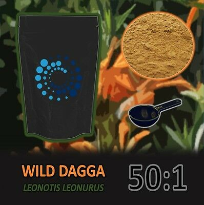 10g LEONOTIS LEONURUS - WILD DAGGA - 50x concentrated powder extract