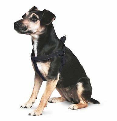 Ancol Padded Dog Harness Large Black, Premium Service, Fast Dispatch