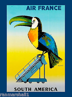 Toucan Bird South America American Vintage Travel Advertisement Art Poster