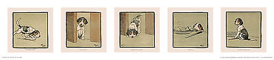 Jack Russell Terrier dog, print by Cecil Aldin. On the Hunt.