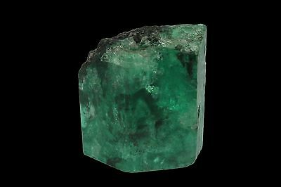 57.22 Carats Rare Terminated Dark Forest Green Natural Colombian Rough Emerald