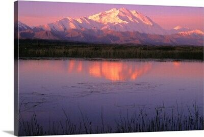 """Mt McKinley Relfected in Tundra Pond Denali NP AK"" Canvas Art Print"