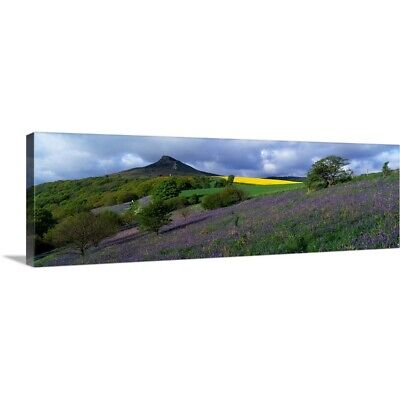 Solid-Faced Canvas Print Wall Art entitled Bluebell Flowers In A Field,
