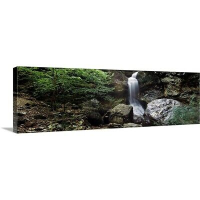 Solid-Faced Canvas Print Wall Art entitled Waterfalls in a forest, Eden Falls,