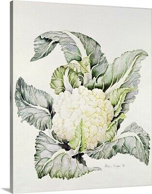 Premium Thick-Wrap Canvas Wall Art entitled Cauliflower Study, 1993
