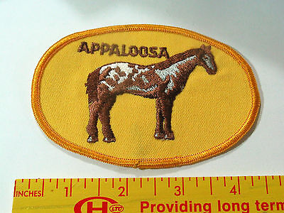 Appaloosa Horse Patch (#3076)