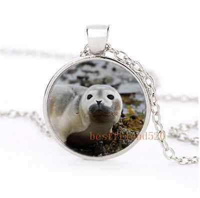 Cute Seal Pup Cabochon Glass Silver Plating Necklace Men Woman Jewelry