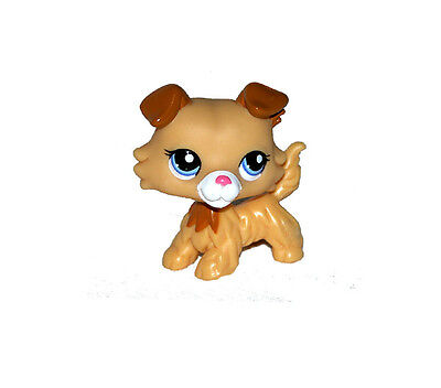 Littlest Pet Shop Brown Ears Yellow Puppy Collie Dog Loose Figure Child Toy UK