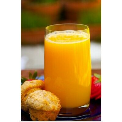 GLASS OF ORANGE JUICE BEVERAGE ALCOHOL Canvas Wall Art Picture DR150 MATAGA