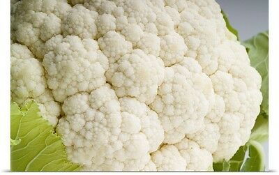 Poster Print Wall Art entitled Cauliflower