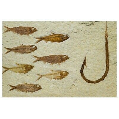 Poster Print Wall Art entitled Fossil fish going after fossil fish hook