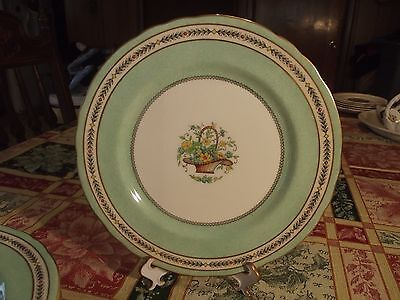 Aynsley dinner plate(s) #4508 rare hand painted unknown pattern