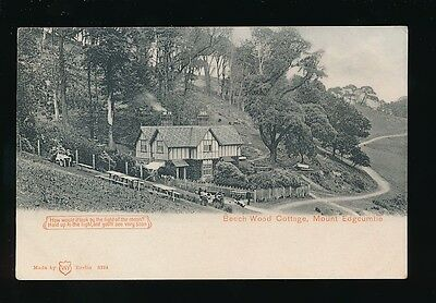 Devon MOUNT EDGCOMBE Beech Wood Cottage HTL HOLD TO LIGHT pre1919 PPC