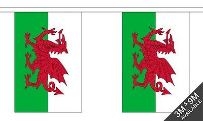 Welsh Dragon Wales Material Flag Flags Bunting Various Sizes 3m 9m Giant