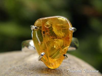 Baltic Amber & 925 SOLID Silver RING (Size 6 3/4 - 7, N -  N 1/2)    #276238