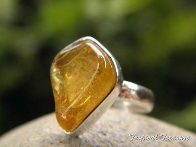 Baltic Amber & 925 SOLID Silver RING (Size 7,  N 1/2)    #276250