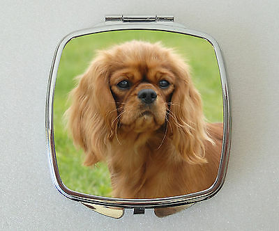 Cavalier King Charles Spaniel Compact Mirror Valentines Mothers Day Gift (Ruby)