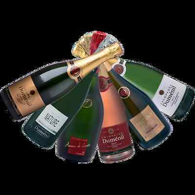 Fine French Mixed Champagne - DUMENIL CHAMPAGNE HOUSE - 6 Bottles Of The Best!