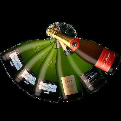 Fine French Mixed Champagne - FORGET-CHEMIN CHAMPAGNE HOUSE - 6 Bottles Variety