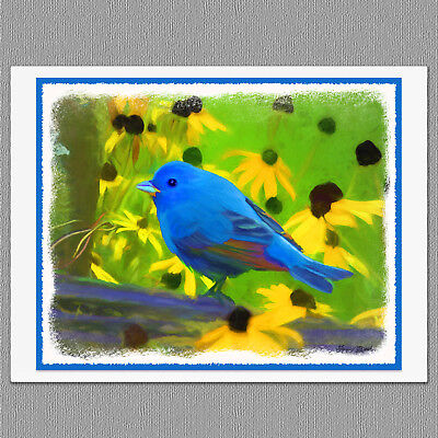 6 Indigo Bunting Blue Wild Bird Blank Art Note Greeting Cards