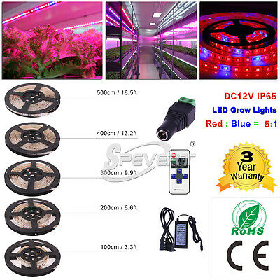 1/2/3/4/5M LED 5050 Strip Light Red Blue 5:1 For Plant Grow Garden Hydroponic