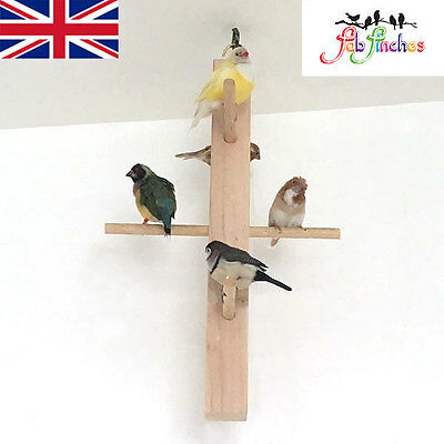 Bird Wooden Triple Tier Perch Swinging Birds Parrot Toy Swing Cage Budgie Finch