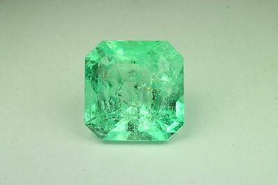24.20cts Remarkable Size Green! Loose Natural Colombian Emerald Cut!