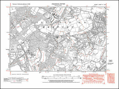 old map Surrey 31-SW Norney Peper Harow Eashing in 1938 Shackleford