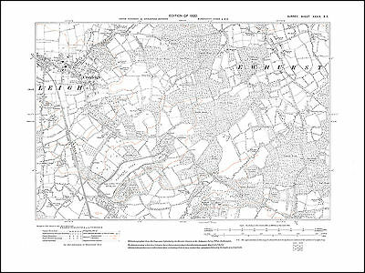Cranleigh, Ewhurst Green in 1920 - old map Surrey 39-SE