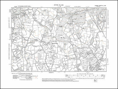 Forest Green, Ockley in 1920 - old map Surrey 40-NW