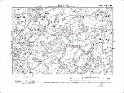 Graysfold, Chiddingfold (west), Combe Common 1920 - old map Surrey 45-NW
