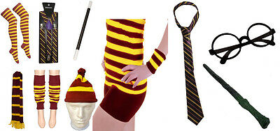 Wizard Fancy Dress Costume Book Week Harry Style Accessories Magic Lot