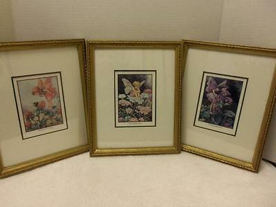 Set Of 3 Framed Fairie Pictures Prints  Art Wall Decor