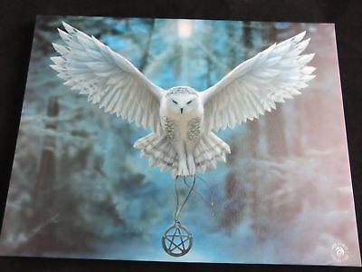 "Anne Stokes ""Awake Your Magic"" Large 40x30cm Owl Canvas Wall Art Plaque Fantasy"