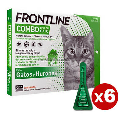 Frontline Combo Chats Y Furets / Chats & Furets - Antiparasite - 6 Pipettes