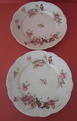 Antique French Porcelain Pair Dessert Plate Limoges Jc France- Birds And Flowers