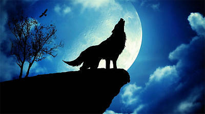 Wall Art Home Decor prints oil painting canvas howling of the wolves Wolf NHD042