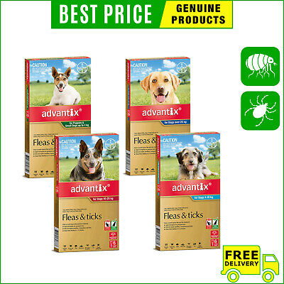 ADVANTIX for Dogs 6 Pipettes Flea and Tick Treatment All Sizes by Bayer