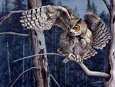 Modern art wall Decor HD prints oil painting on canvas owl in the woods my337