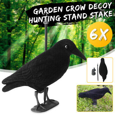 6 Black Full Body Flocked Crow Decoy Jet Trap Rook Hunting Shooting Feet Stake