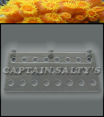 Captain Saltys Coral Reef Magnetic Invisible Frag Rack (Extra-Large) CS20004