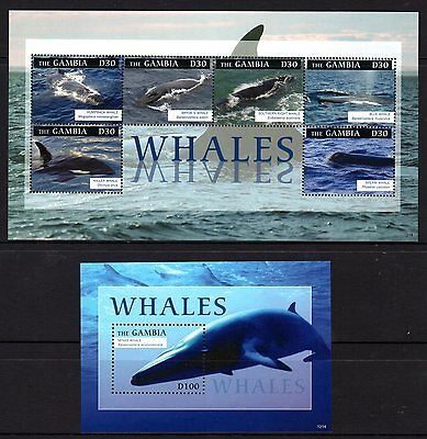 Gambia 2012 Whales Sheetlet 6 + M/S MNH