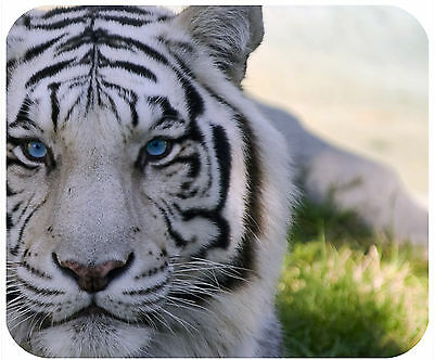 Mouse Pad Custom Personalized Thick Mousepad-White Tiger Close Up-Add Any Text