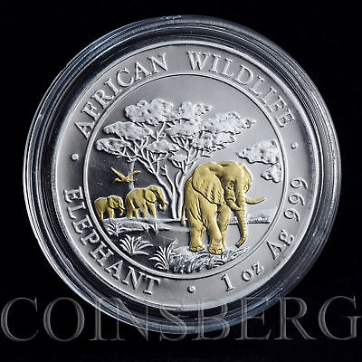 Somali 100 shillings African Wildlife elephant silver gilded 1 oz coin 2012