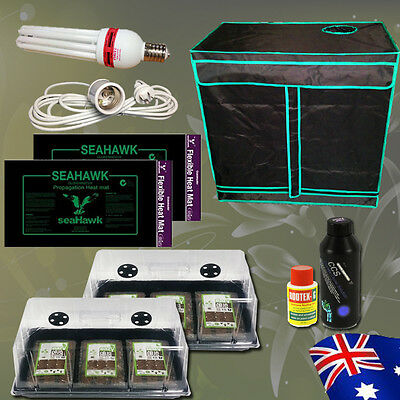Hydroponics Seedling Cloning Kit Grow Tent CFL Coco Peat Dome Heat Mat Nutrients