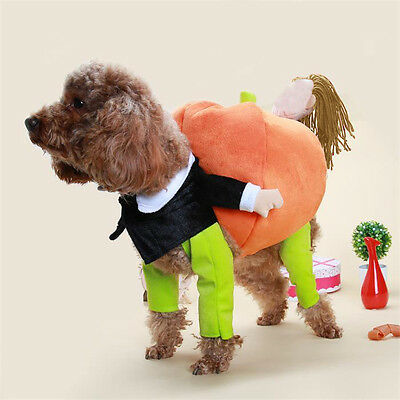 Funny Pet Dog Clothes Carry Pumpkin Cosplay Costume Fancy Puppy Apparel Jacket
