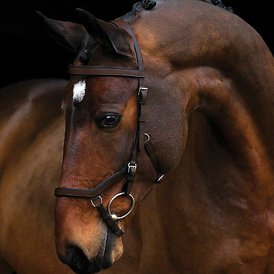 Rambo Micklem Competition Bridle, FEI Approved,Quality Leather,All Sizes/Colours
