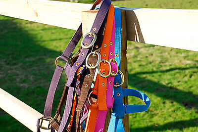 Rhinegold Headcollar With or Without Lead Rope  All Sizes & Colours in stock