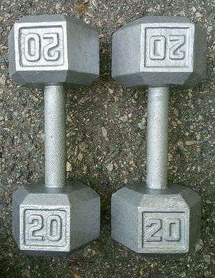 Pair of 20 lb Cast Iron Hex Dumbbells Steel Free Weights Set Pound 2x20 lbs